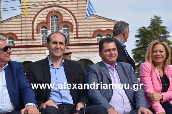 alexandriamou.gr_meliki_karnaval199262