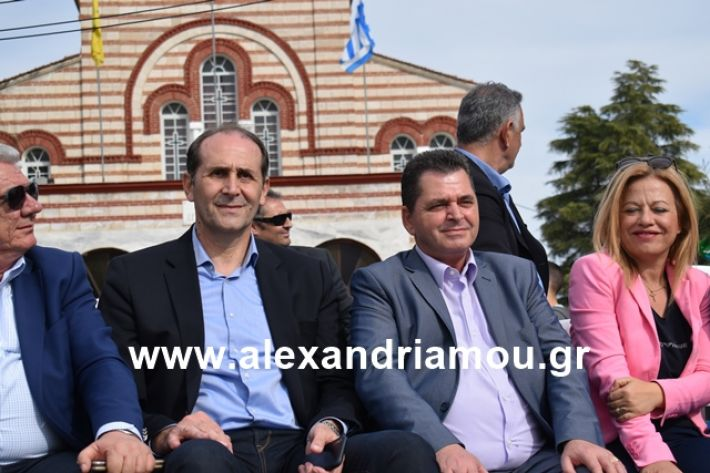alexandriamou.gr_meliki_karnaval199263