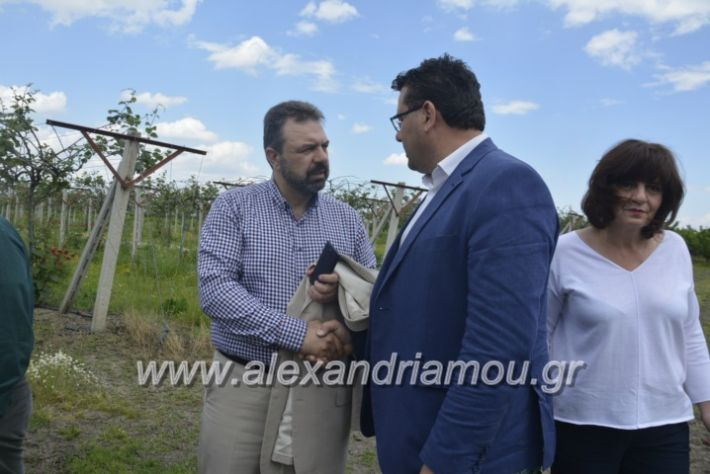 alexandriamou_araxobitis2019113