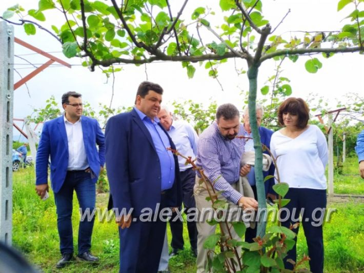 alexandriamou_araxobitis2019148