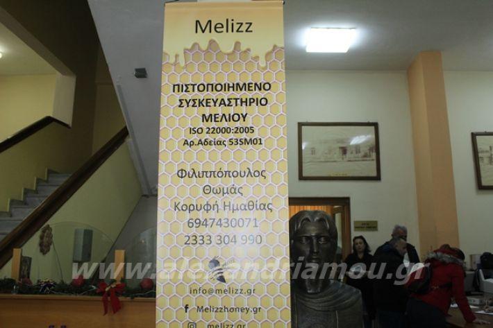 alexandriamou.gr_melsem2019021
