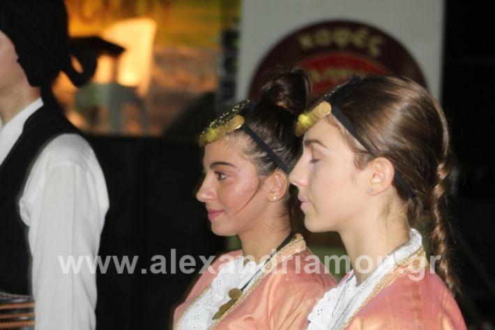 alexandriamou.gr_mieza2019048