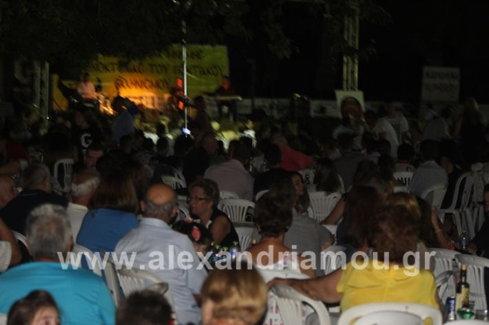 alexandriamou.gr_mieza2019105