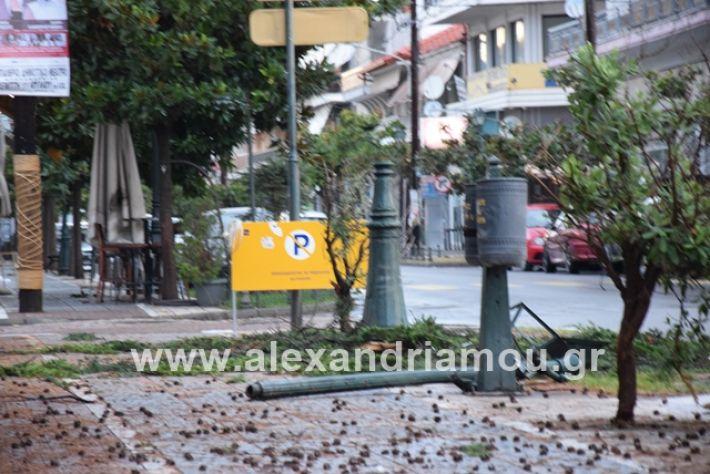 alexandriamou.gr_mpourini1201900033