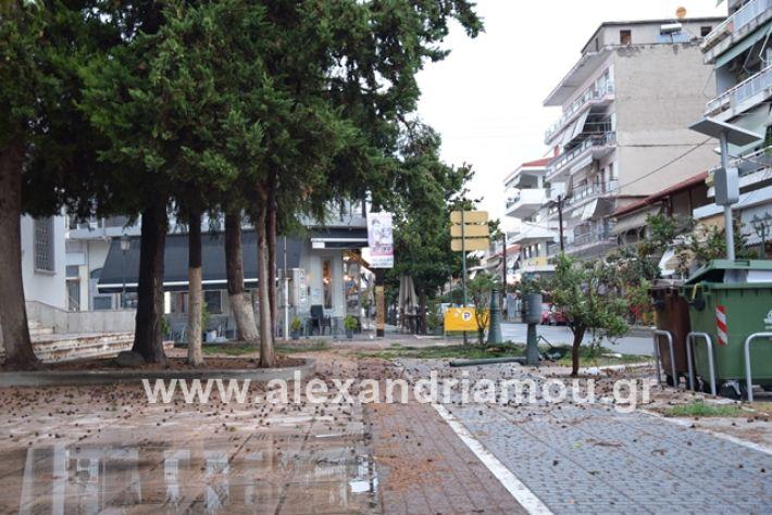 alexandriamou.gr_mpourini1201900034