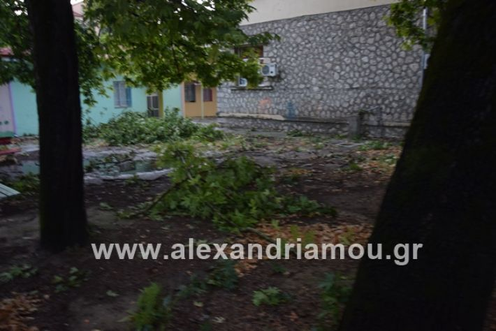 alexandriamou.gr_mpourini1201900043