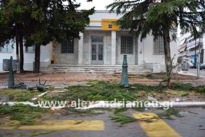 alexandriamou.gr_mpourini1201900058