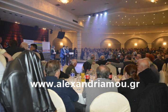 alexandriamou.gr_nalmpntisomilia20191067
