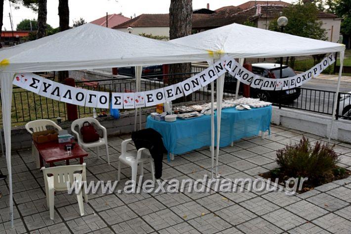 alexandriamou.gr_aimodosia25DSC_0327