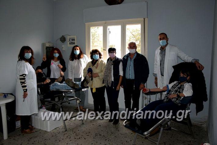 alexandriamou.gr_aimodosia25DSC_0332
