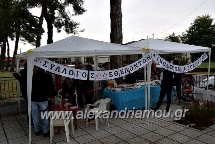 alexandriamou.gr_aimodosia25DSC_0348