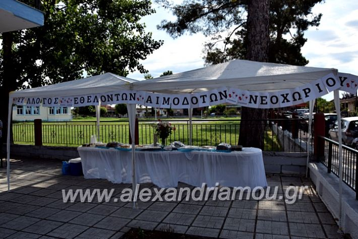alexandriamou.gr_neoxori_aimodosia20DSC_1274