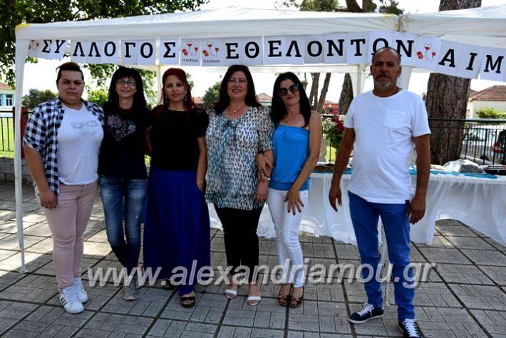 alexandriamou.gr_neoxori_aimodosia20DSC_1275