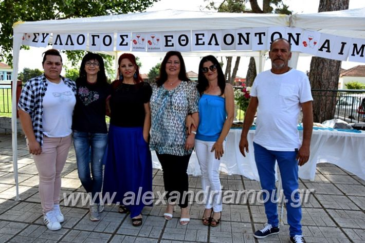alexandriamou.gr_neoxori_aimodosia20DSC_1276