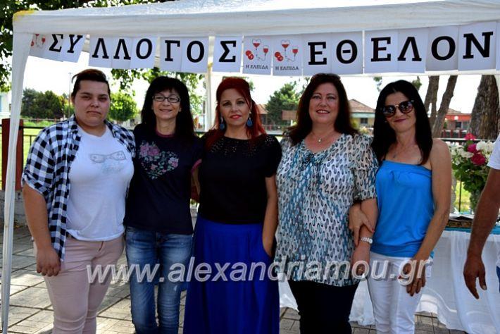 alexandriamou.gr_neoxori_aimodosia20DSC_1277