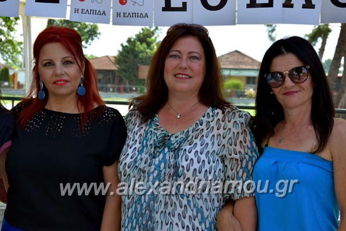 alexandriamou.gr_neoxori_aimodosia20DSC_1279