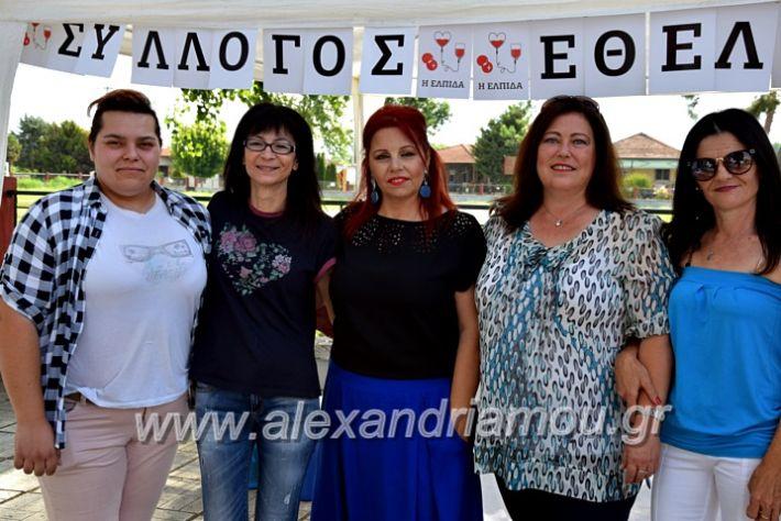 alexandriamou.gr_neoxori_aimodosia20DSC_1281