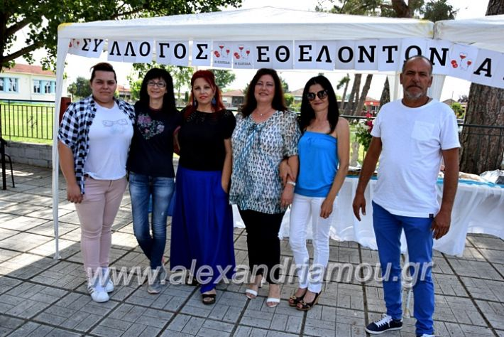 alexandriamou.gr_neoxori_aimodosia20DSC_1282