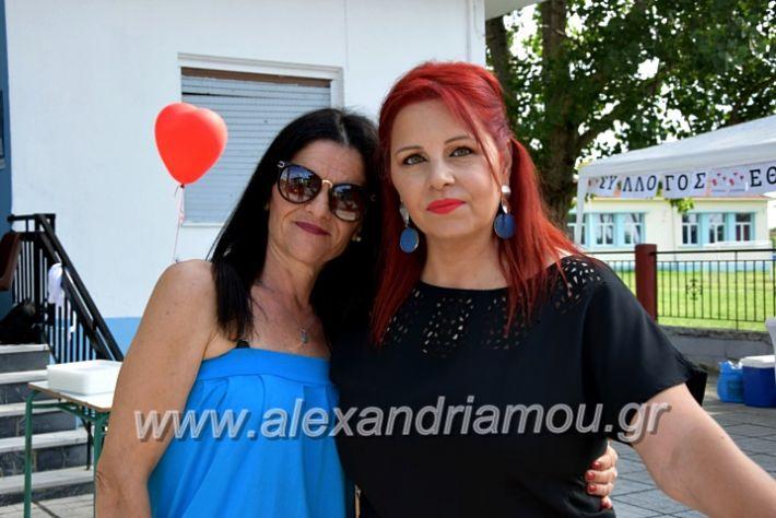 alexandriamou.gr_neoxori_aimodosia20DSC_1296