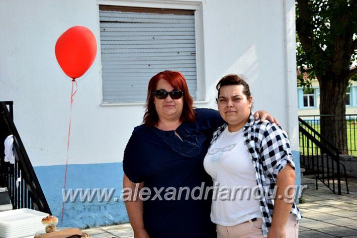 alexandriamou.gr_neoxori_aimodosia20DSC_1301