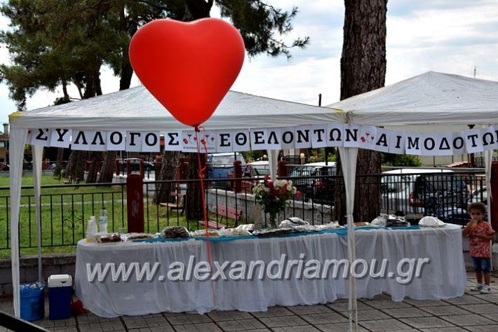 alexandriamou.gr_neoxori_aimodosia20DSC_1309