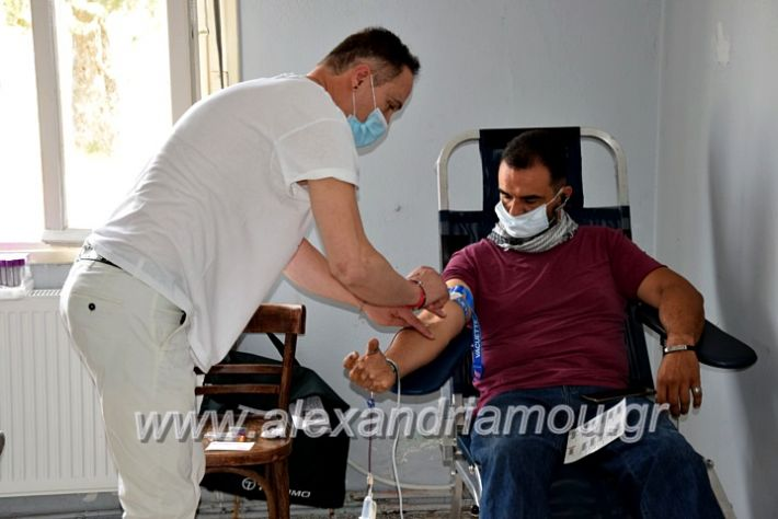 alexandriamou.gr_neoxori_aimodosia20DSC_1319