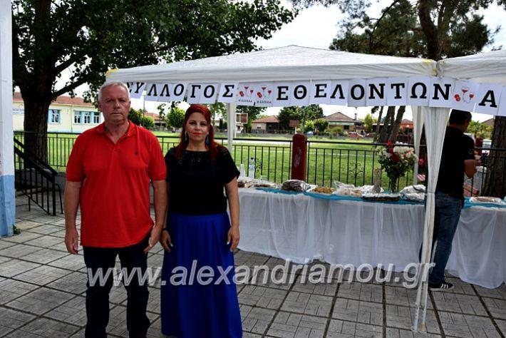 alexandriamou.gr_neoxori_aimodosia20DSC_1322