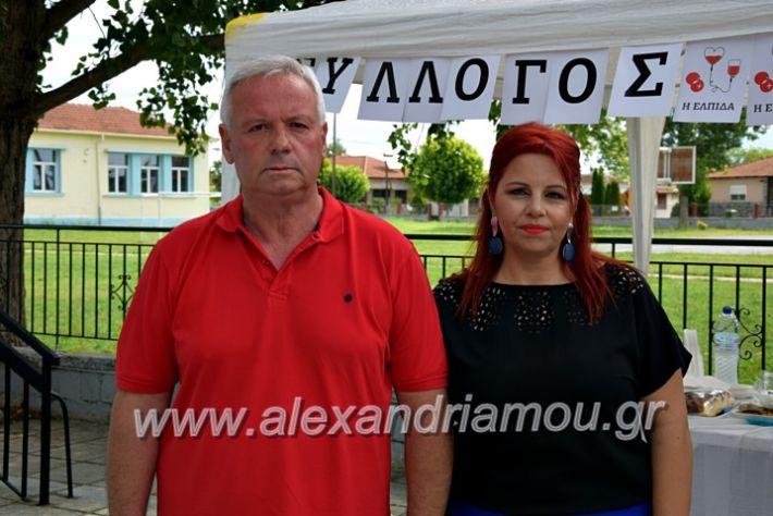 alexandriamou.gr_neoxori_aimodosia20DSC_1323