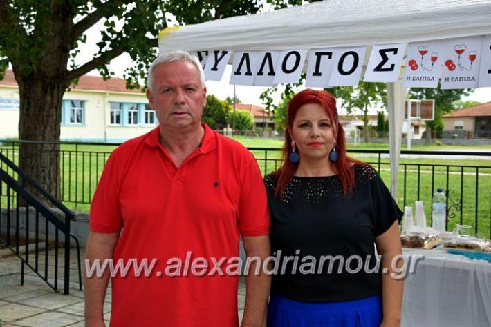 alexandriamou.gr_neoxori_aimodosia20DSC_1325