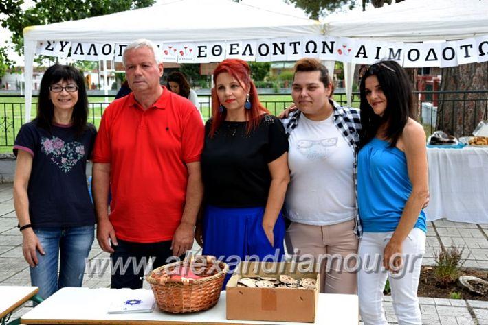 alexandriamou.gr_neoxori_aimodosia20DSC_1336