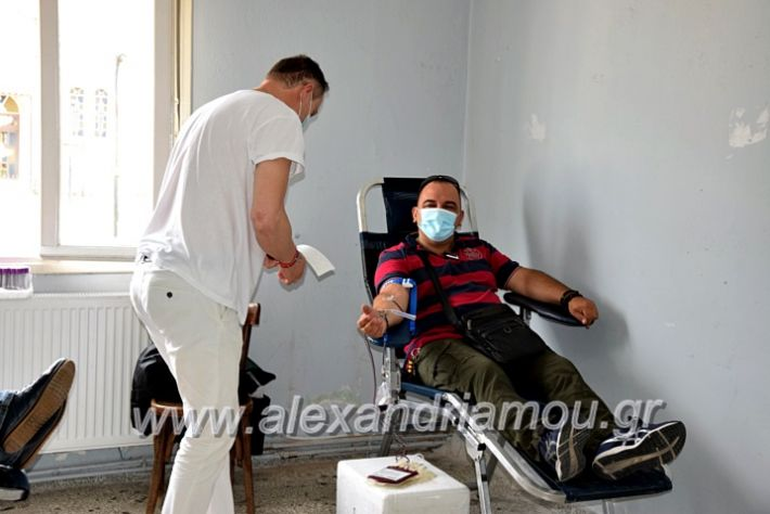 alexandriamou.gr_neoxori_aimodosia20DSC_1343