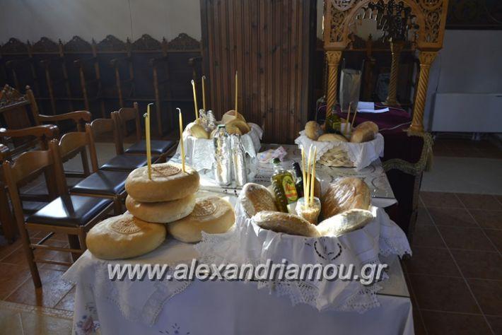 alexandriamou_neoxoropoulo018