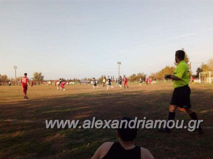 alexandriamou.gr_niseli11.11003