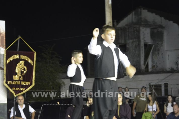 alexandriamou.gr_nisi201801_DSC2483