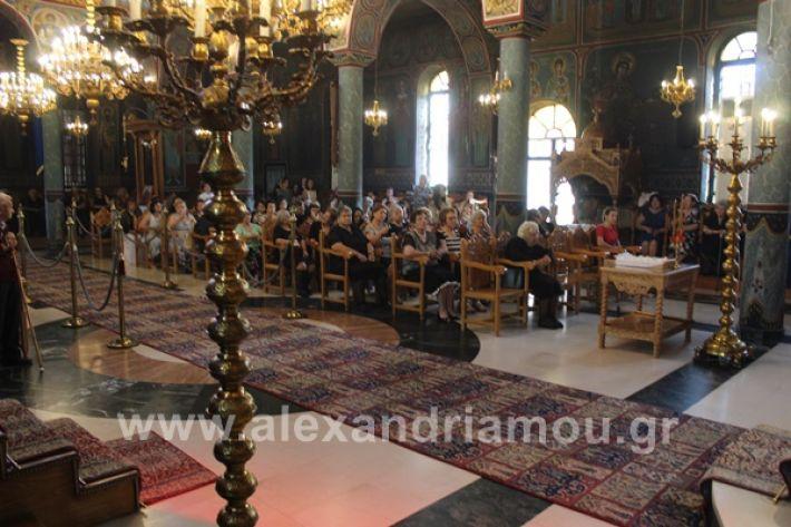 www.alexandriamou.gr_nisi20IMG_0735