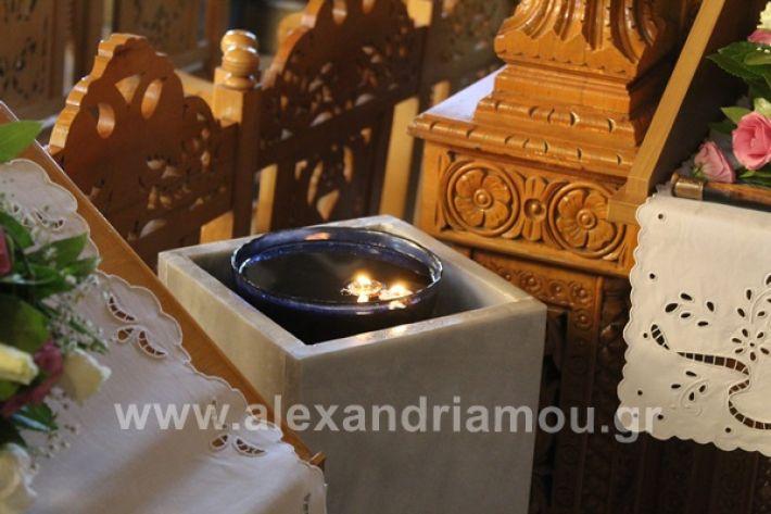 www.alexandriamou.gr_nisi20IMG_0751
