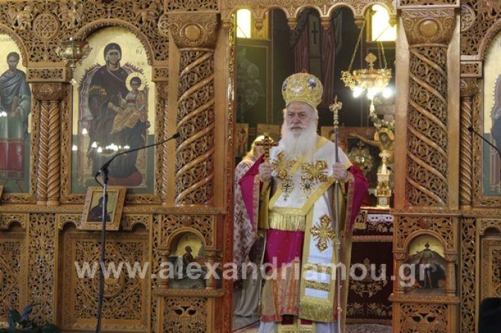 www.alexandriamou.gr_nisi20IMG_0763