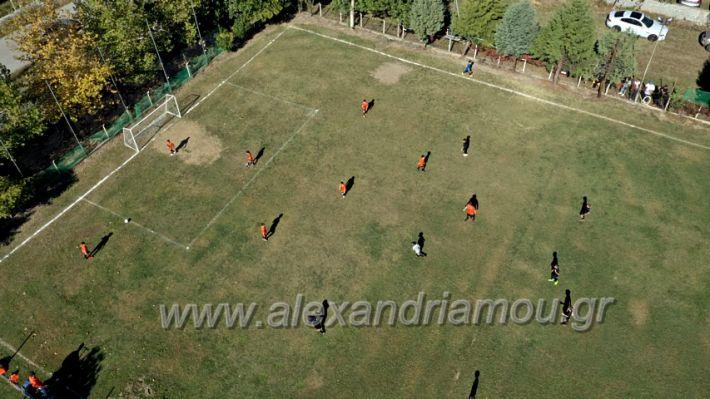 alexandriamou.gr_nisi1010DJI_0332