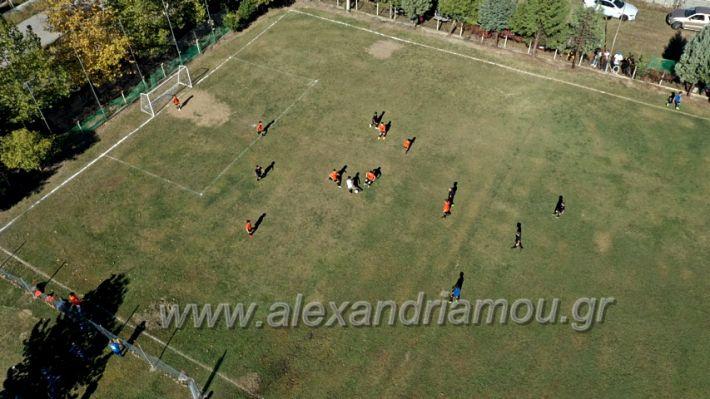 alexandriamou.gr_nisi1010DJI_0333