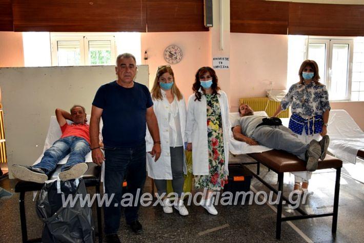 alexandriamou.gr_aimodosianisiDSC_0853