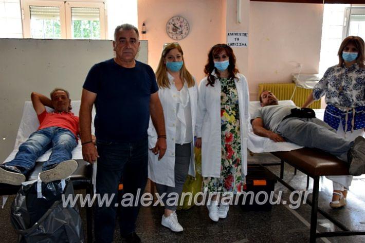 alexandriamou.gr_aimodosianisiDSC_0855