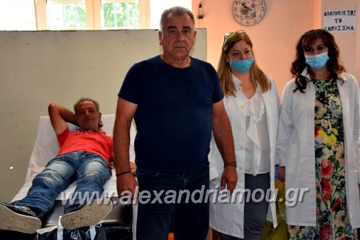alexandriamou.gr_aimodosianisiDSC_0856