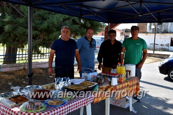 alexandriamou.gr_aimodosianisiDSC_0881
