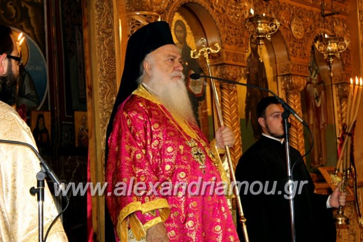 alexandriamou.gr_agigoianargiroi2019nisiIMG_0073