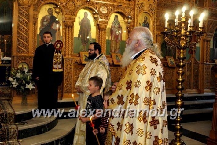 alexandriamou.gr_agigoianargiroi2019nisiIMG_0126