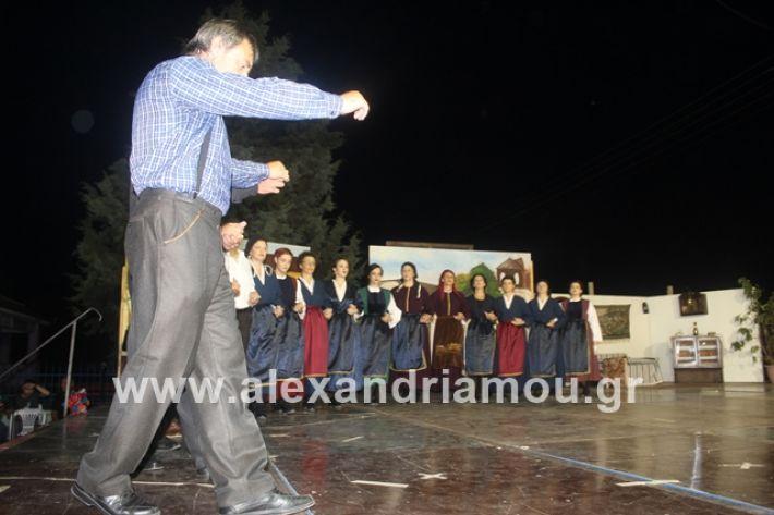 alexandriamou.gr_panigirinisi2019060