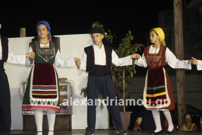 alexandriamou.gr_panigirinisi2019116