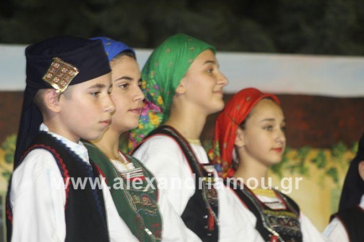 alexandriamou.gr_panigirinisi2019139