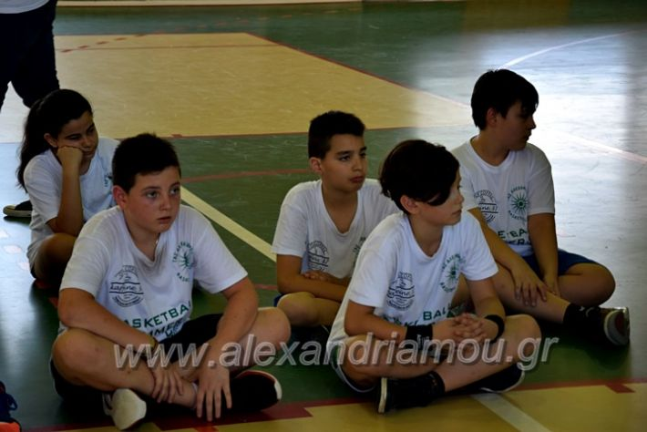alexandriamou.gr_oikonomou2010DSC_0559