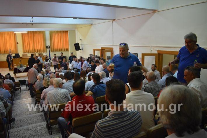 alexandriamou.gr_orkomosia2019DSC_0159
